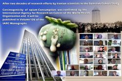 After two decades of research efforts by Iranian scientists in the Golestan Cohort Study, Carcinogenicity of Opium Consumption was confirmed by the International Agency for Research on Cancer (IARC / WHO)